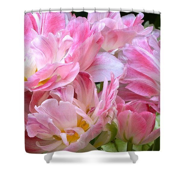 A Crowd Of Tulips Shower Curtain