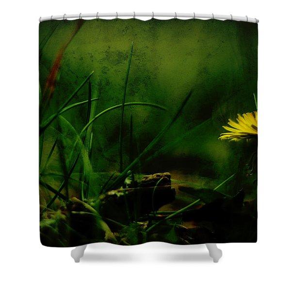 A Darkness Befalls The Dandelion Shower Curtain