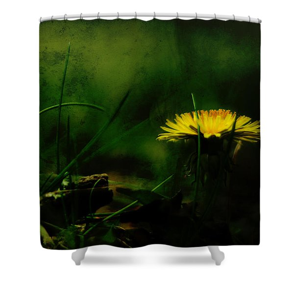 A Darkness Befalls The Dandelion Shower Curtain