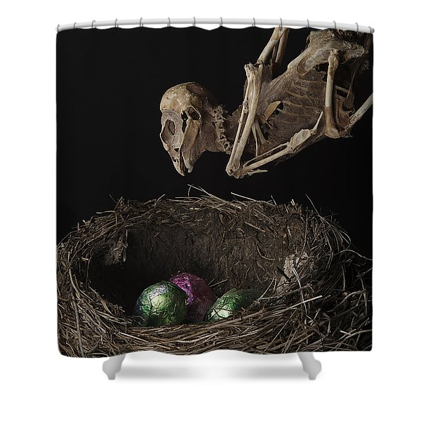 A Dead Bird Flies Into Its Nest Only To Find Chocolate Eggs Shower Curtain