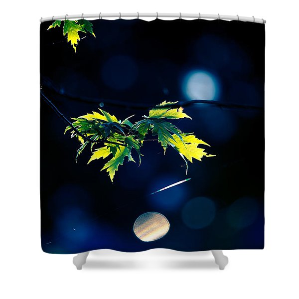 A Few Leaves In The Sun Shower Curtain
