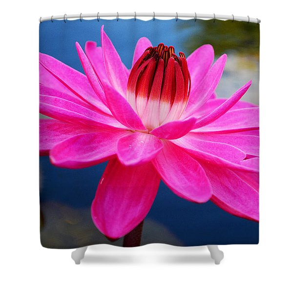A Flower And A Dream... Shower Curtain