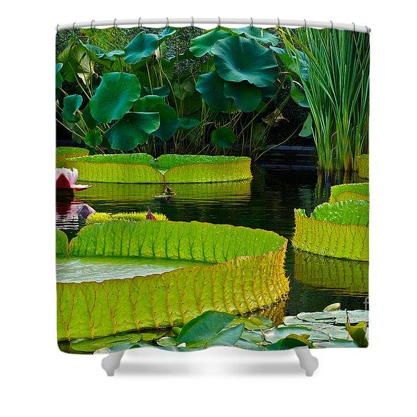 A Garden In Gentle Waters Shower Curtain