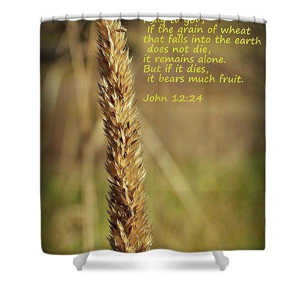 A Grain Of Wheat Shower Curtain