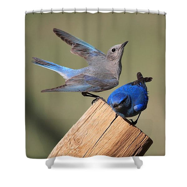 A Great Pair Shower Curtain