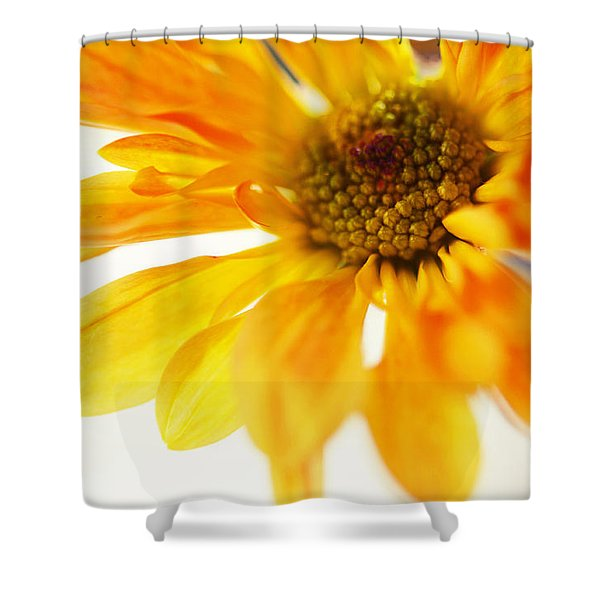 A Little Bit Sun In The Cold Time Shower Curtain