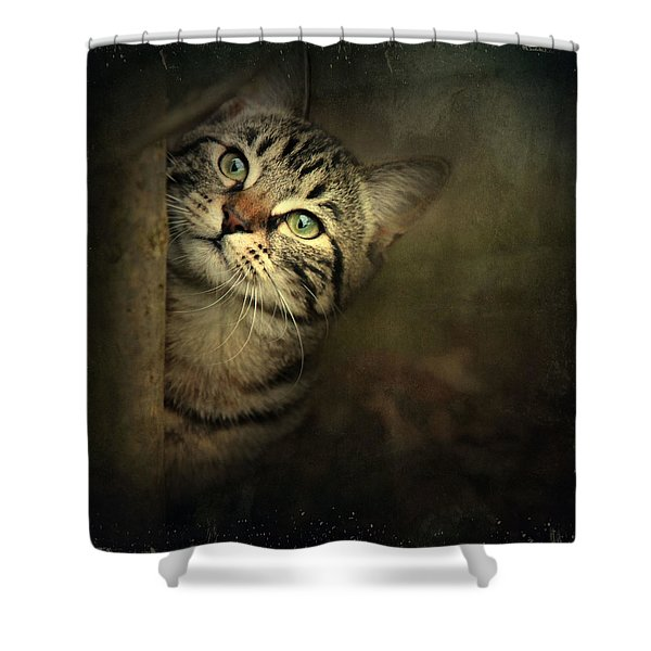 A Little Shy Shower Curtain