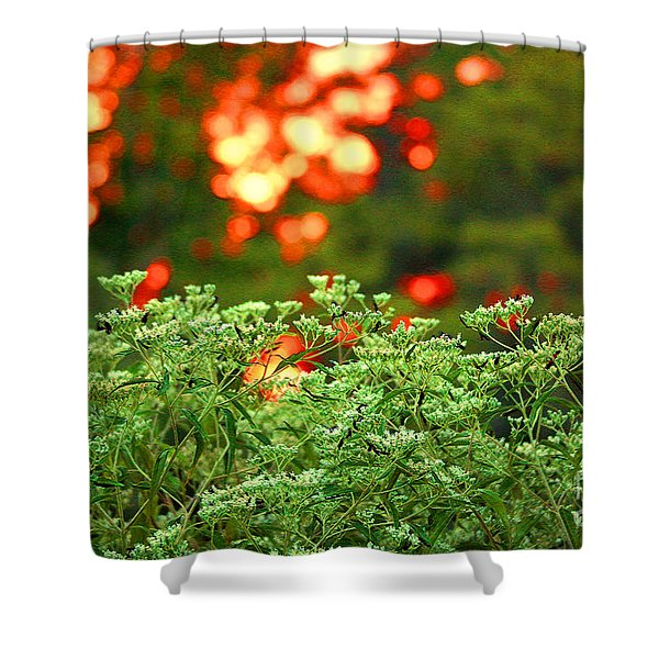 A Love Bug Sunset Shower Curtain