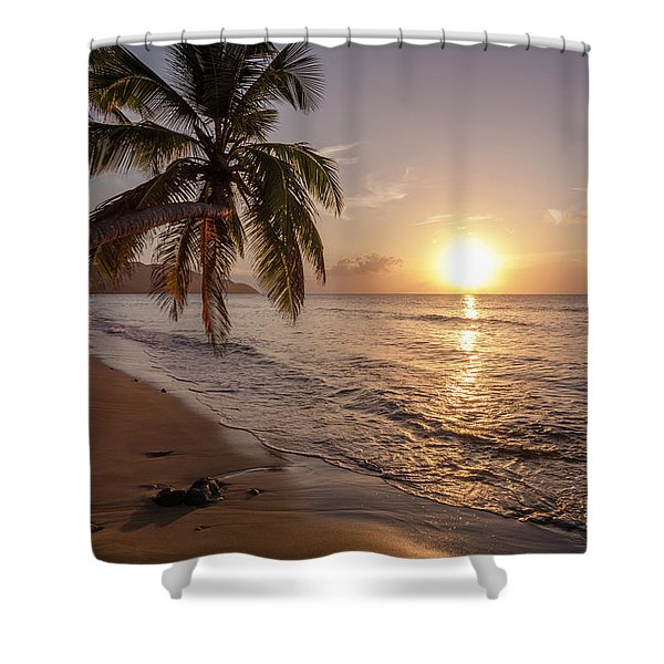A Palm Tree Silhouette At Sunset  St Shower Curtain