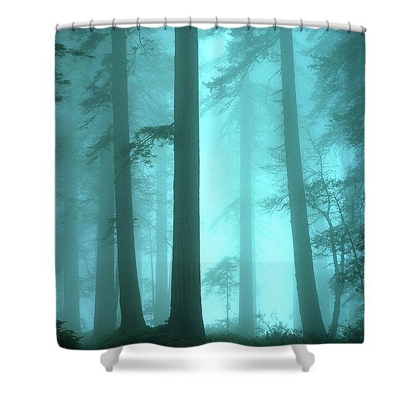 A Place Of Awe Shower Curtain