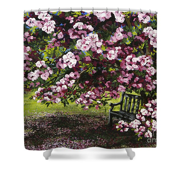 A Place To Dream Shower Curtain