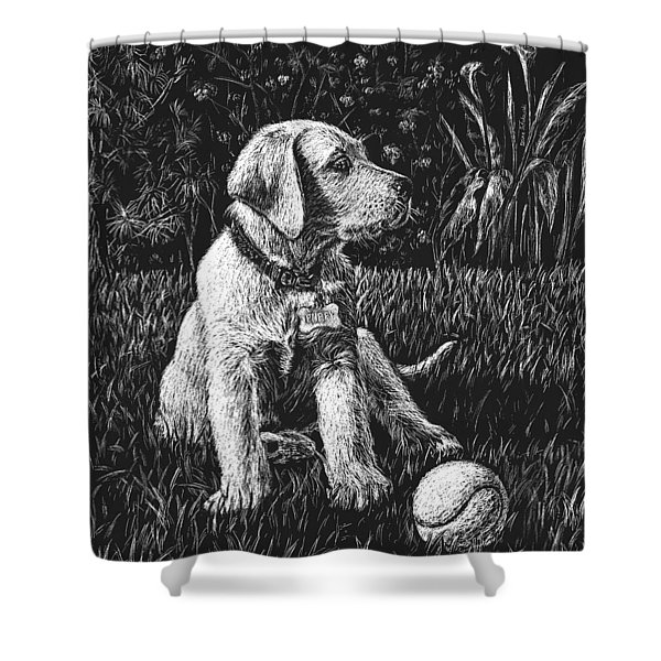 A Puppy With The Ball Shower Curtain