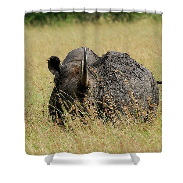 A Rhino Standing In The Grass Shower Curtain