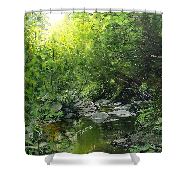 A Road Less Traveled Shower Curtain