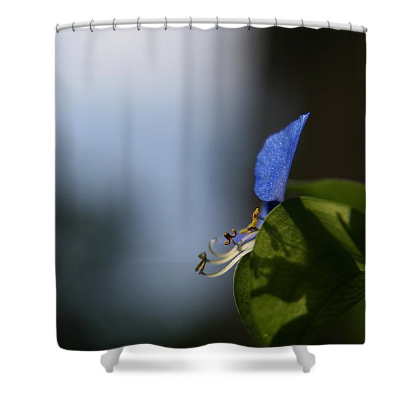 A Side Of Commelina Communis  Shower Curtain