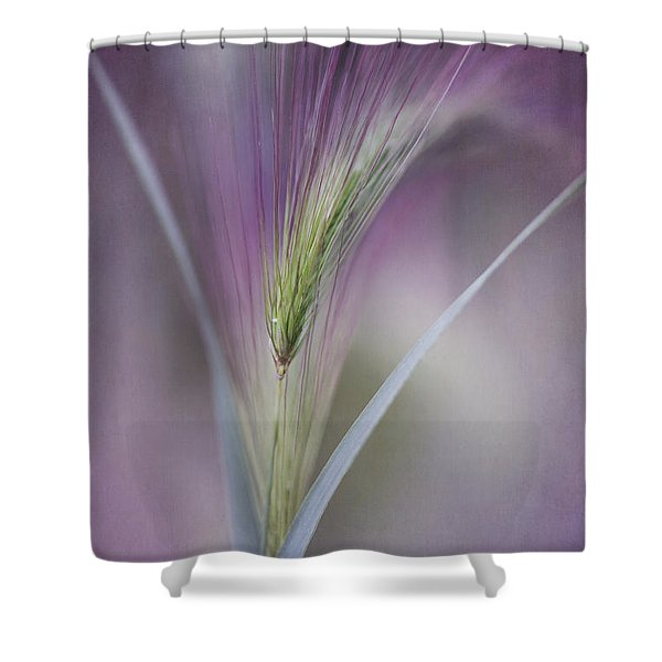 A Single Whisper Shower Curtain