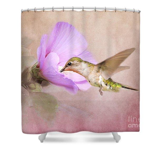 A Taste Of Nectar Shower Curtain