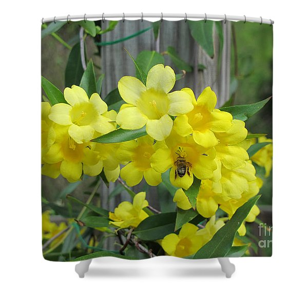 A Taste Of Yellow Shower Curtain