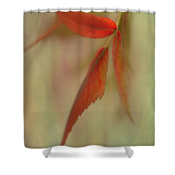 A Touch Of Autumn Shower Curtain