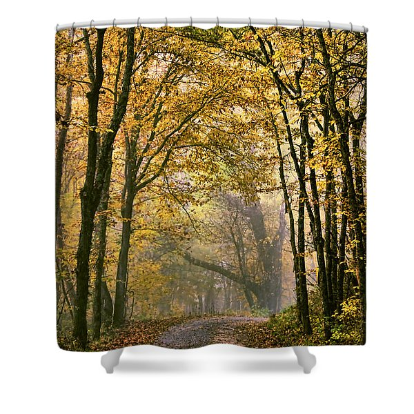 A Touch Of Gold Shower Curtain