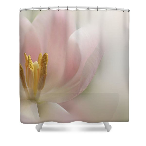 A Touch Of Pink Shower Curtain