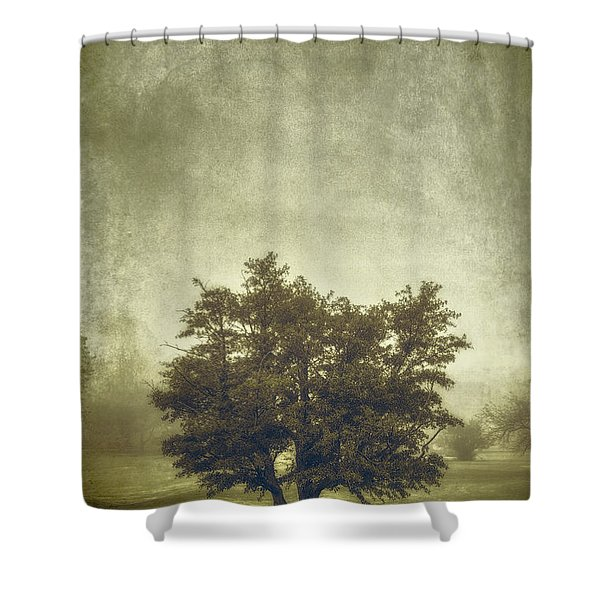 A Tree In The Fog 2 Shower Curtain