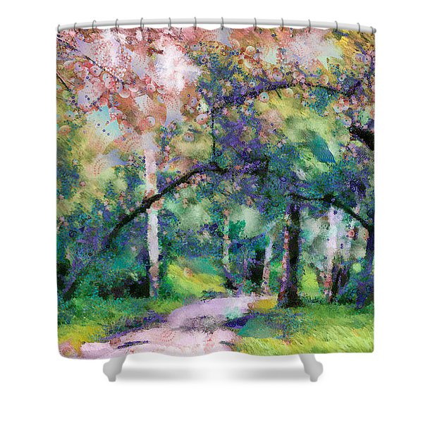 A Walk Inside The Rainbow Forest Shower Curtain