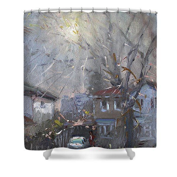 A Hazy Winter Day Shower Curtain