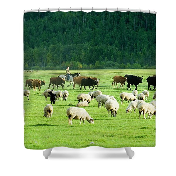 A Young Girl Herder Moves Her Familys Shower Curtain