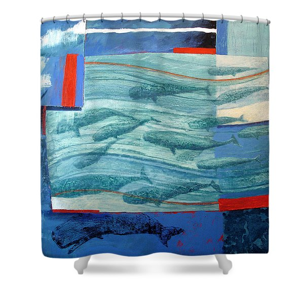 About 120 Western Grey Whales Wc On Paper Shower Curtain