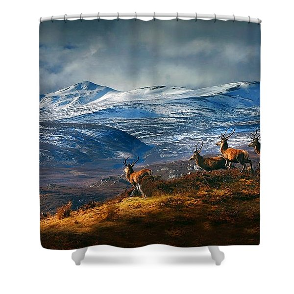 Above Strathglass Shower Curtain