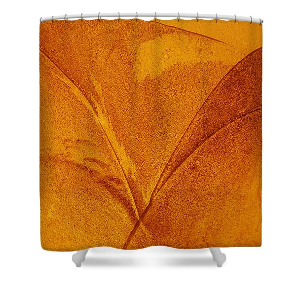 Abstract Design Shower Curtain