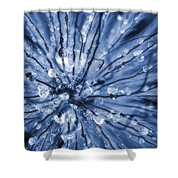 Abstract Macro Flower Head Shower Curtain