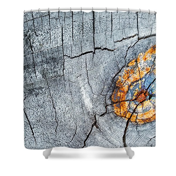 Abstract Woodgrain Upclose 6 Shower Curtain