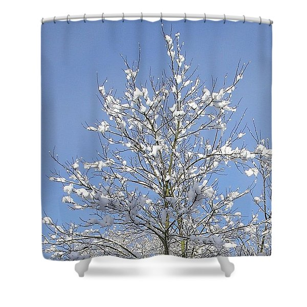 Ash Tree In Winter Shower Curtain
