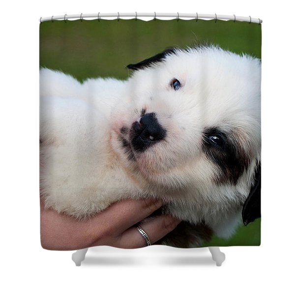 Adorable Hand Full Shower Curtain