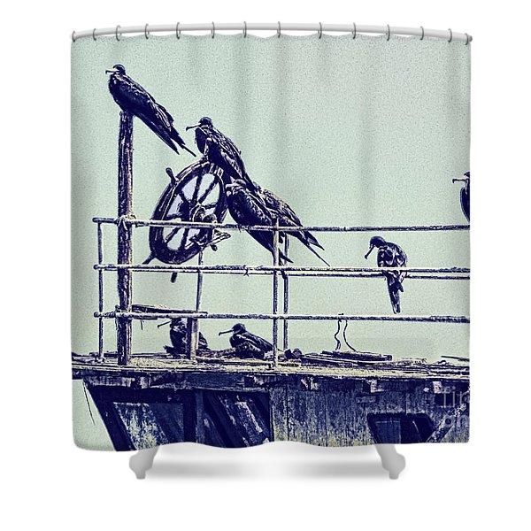 Adrift Shower Curtain