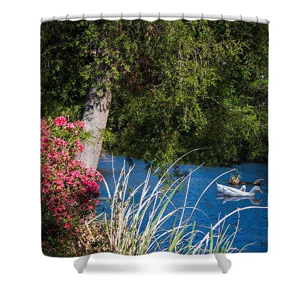 Afternoon Swim Shower Curtain