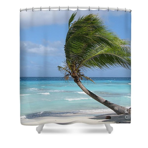 Against The Winds Shower Curtain