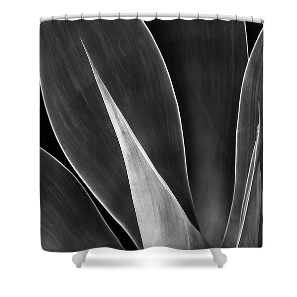 Agave No 3 Shower Curtain