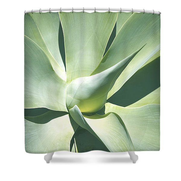 Agave Plant 1 Shower Curtain