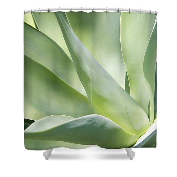 Agave Plant 2 Shower Curtain