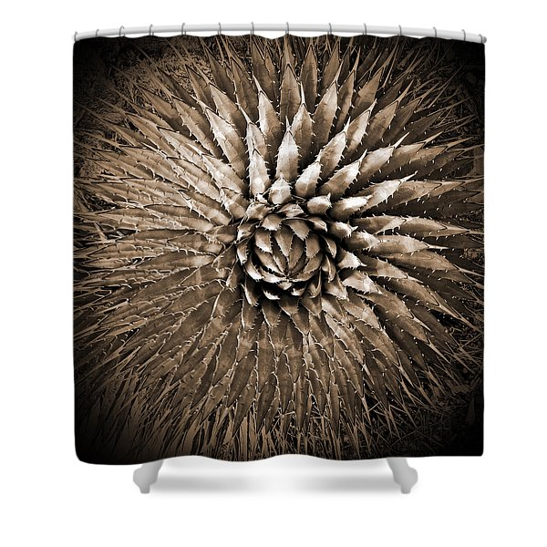 Agave Spikes Sepia Shower Curtain