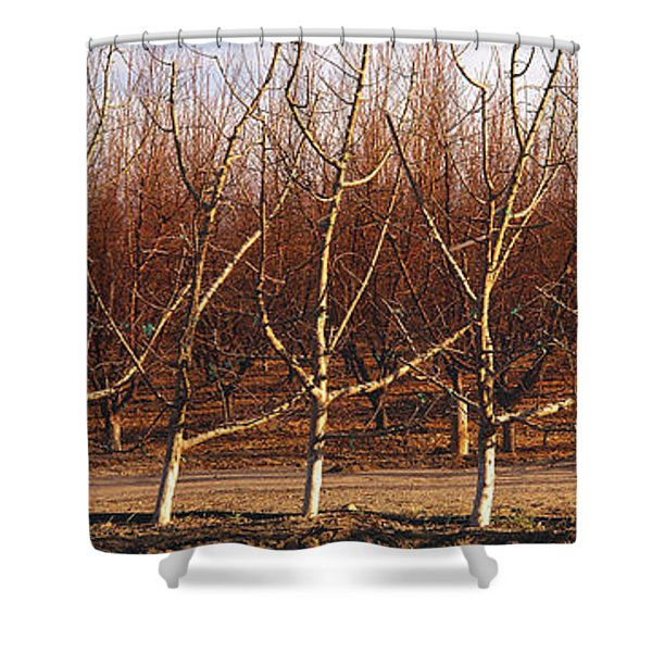 Agriculture - Dormant High Density Shower Curtain