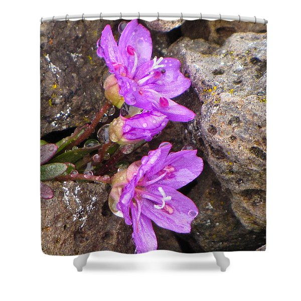 Alaskan Wildflower Shower Curtain