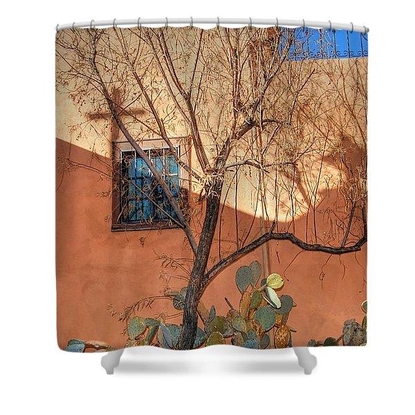Albuquerque Mission Shower Curtain