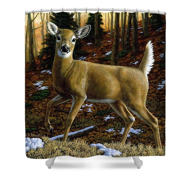 Whitetail Deer - Alerted Shower Curtain