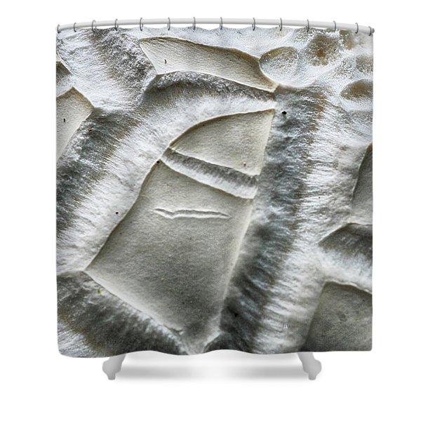 Alien Surface Shower Curtain