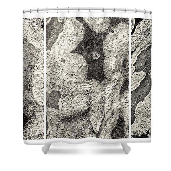 Alien Triptych Landscape Bw Shower Curtain