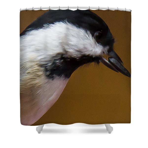Shower Curtain featuring the photograph All I Need Is One by Robert L Jackson